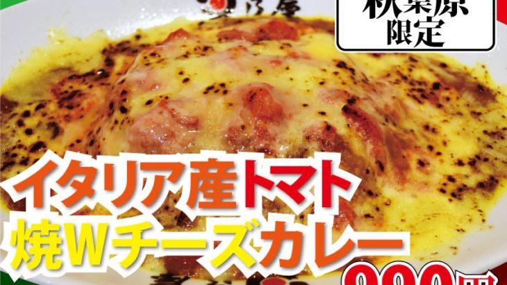 【新メニュー】東京|日乃屋カレー秋葉原|新メニュー登場‼️